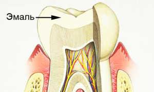 Что такое эмаль зуба: строение, химический состав и свойства