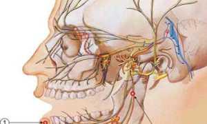 Что делать, если задет нерв на нижней челюсти при установке имплантов