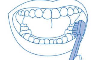 Как правильно чистить зубы: техника, щетки и пасты