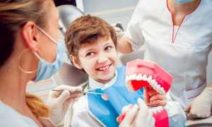 Профессия — врач-ортодонт